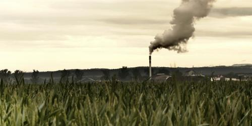 Factory chimney in the background of wheat fields